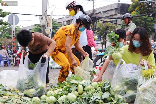 Rằm tháng Giêng, người Sài Gòn hồ hởi kéo nhau đi giải cứu bắp cải, su hào cho bà con Hải Dương - Ảnh 5.
