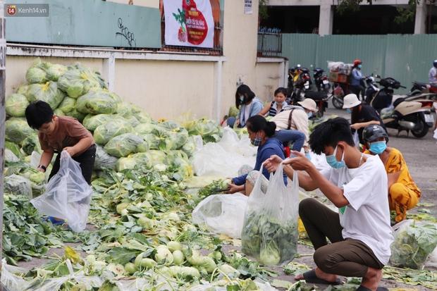 Rằm tháng Giêng, người Sài Gòn hồ hởi kéo nhau đi giải cứu bắp cải, su hào cho bà con Hải Dương - Ảnh 1.