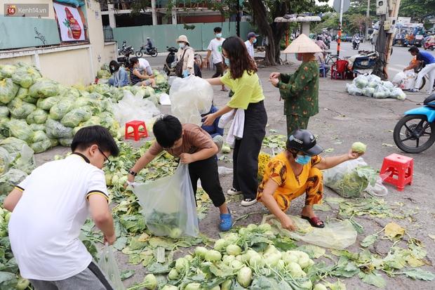 Rằm tháng Giêng, người Sài Gòn hồ hởi kéo nhau đi giải cứu bắp cải, su hào cho bà con Hải Dương - Ảnh 12.