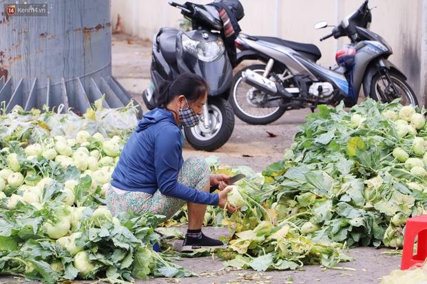 Rằm tháng Giêng, người Sài Gòn hồ hởi kéo nhau đi giải cứu bắp cải, su hào cho bà con Hải Dương - Ảnh 9.