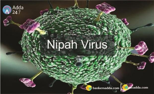 WHO cảnh báo virus Nipah có thể đột biến và gây ra đại dịch tiếp theo - Ảnh 1.