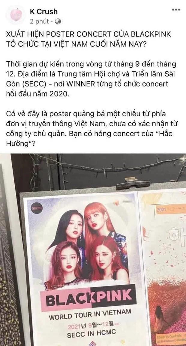 Xôn xao tấm poster BLACKPINK tổ chức concert tại Việt Nam cuối năm nay, netizen liếc qua rồi cất vào một góc vì... ai rảnh đâu mà tin - Ảnh 1.