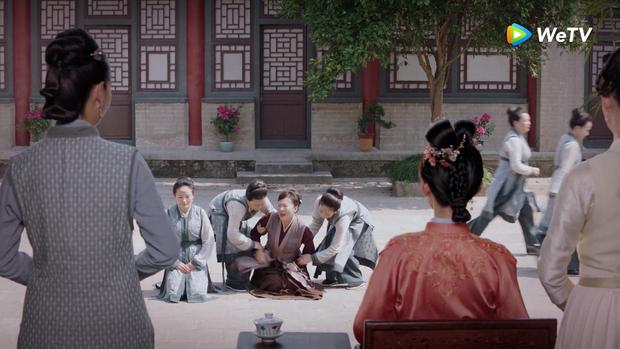 Trà xanh Cẩm Tâm Tựa Ngọc giở trò chèn ép liền bị vợ cả Đàm Tùng Vận bật lại, còn được Chung Hán Lương dạy cho 5 bài học đến khóc thét - Ảnh 8.