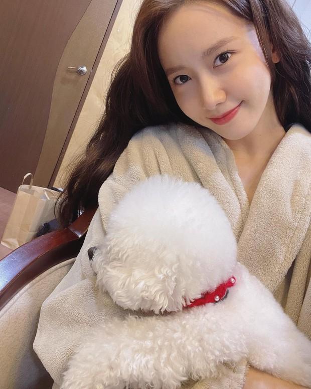 Yoona và loạt sao Hàn hé lộ cách rửa mặt sạch sành sanh, áp dụng theo để loại bỏ đám bã nhờn đáng ghét! - Ảnh 3.