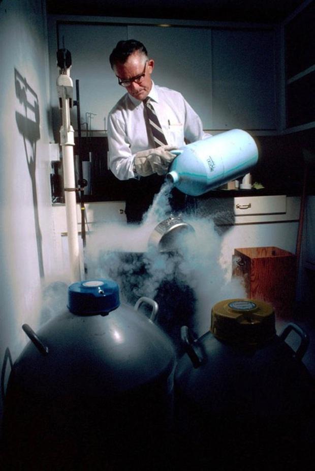 Thiên tài từ trứng nước: Từng có một nơi chỉ lấy tinh trùng của thiên tài giỏi nhất thế giới, và những gì xảy ra sau đó không giống như bạn tưởng tượng - Ảnh 4.