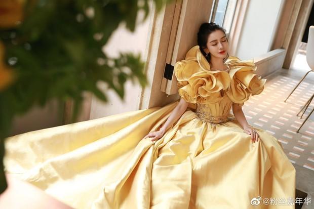 Màn đọ sắc khốc liệt nhất Cbiz hôm nay: Angela Baby hoá công chúa Belle, so kè từng milimet với Nhiệt Ba - Triệu Lệ Dĩnh - Ảnh 8.