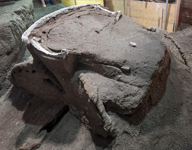 Mày mò tìm kiếm ở thành phố diệt vong Pompeii, các nhà khoa học sửng sốt khi khám phá ra thứ độc nhất vô nhị vô cùng quý giá - Ảnh 1.