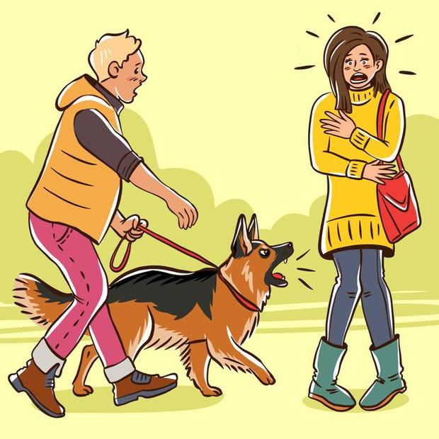 Nỗi lòng của những người sợ chó: Tại sao chó nhìn thấy bạn lại sủa, với người khác thì không? - Ảnh 1.