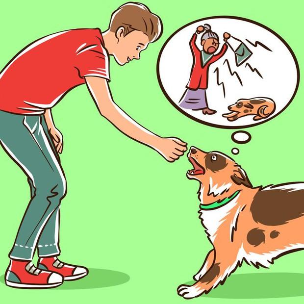 Nỗi lòng của những người sợ chó: Tại sao chó nhìn thấy bạn lại sủa, với người khác thì không? - Ảnh 4.