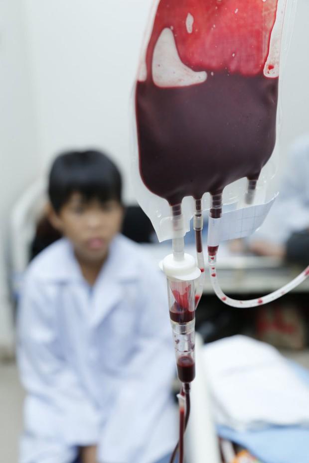 Khẩn: Thiếu 13.000 đơn vị máu dịp Tết, Viện Huyết học kêu gọi cộng đồng hiến máu và tiểu cầu - Ảnh 4.