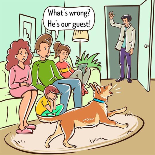 Nỗi lòng của những người sợ chó: Tại sao chó nhìn thấy bạn lại sủa, với người khác thì không? - Ảnh 5.