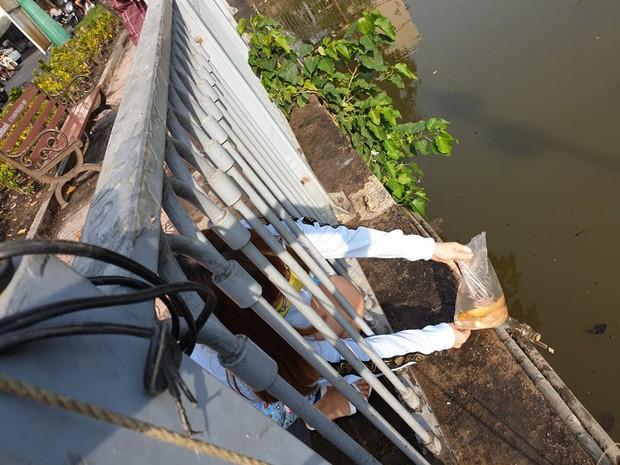 Người Sài Gòn chen chân thả cá chép trên kênh Nhiêu Lộc - Thị Nghè, tiễn ông Công ông Táo về trời ngày 23 tháng Chạp - Ảnh 9.