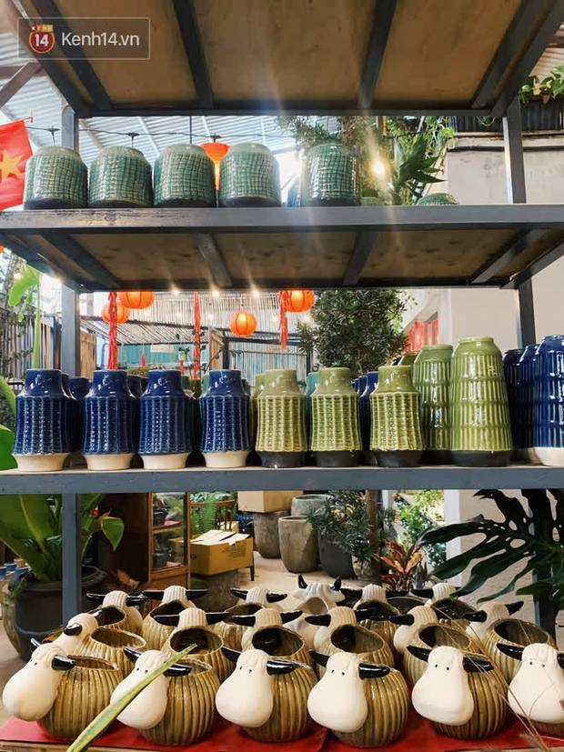 Mình đã tìm được 1 tiệm bán bình hoa siêu xinh mà giá lại rẻ ở Sài Gòn: Tết này tha hồ mà cắm mai đào! - Ảnh 5.
