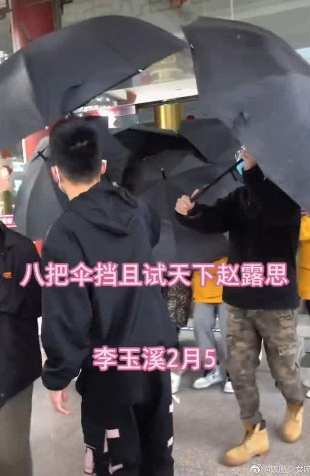 Triệu Lộ Tư bị chê làm lố hơn cả Cúc Tịnh Y, trốn chui trốn nhủi dưới 8 chiếc ô trên trường quay Thả Thí Thiên Hạ - Ảnh 1.