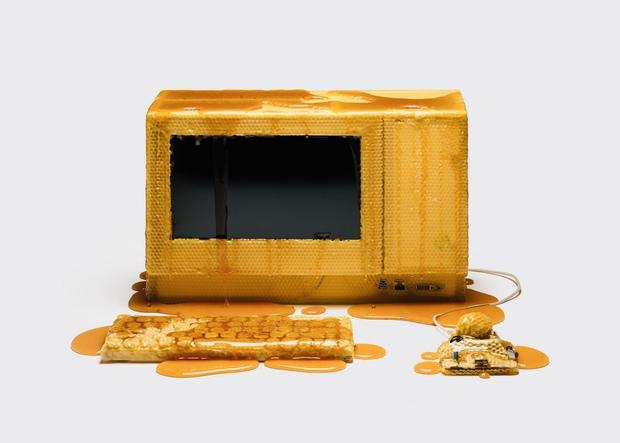 Nhân viên Google dìm hàng Apple khi ngồi thiết kế lại máy tính Mac với vật liệu làm từ mật ong, đá và... mỡ lợn - Ảnh 1.