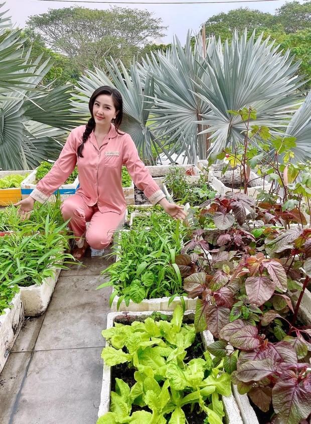 Cách Bảo Thy chill bên trong biệt thự hào môn: Chán du lịch chanh sả thì về trồng rau, diện dép lê gần 16 triệu thăm vườn - Ảnh 2.