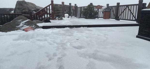 Tuyết bất ngờ rơi phủ trắng đỉnh Fansipan ngày cuối năm - Ảnh 5.