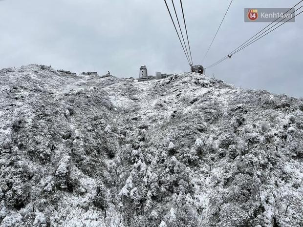 Ảnh: 28 Tết, tuyết phủ dày 60cm trên đỉnh Fansipan, đẹp như phim cổ trang - Ảnh 4.