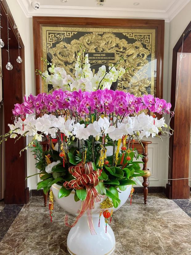Nhà Bảo Thy nhiều cây hoa Tết đẹp quá: Ai chưa sắm thì sắm theo ngay còn kịp - Ảnh 9.