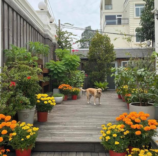 4 nhà hào môn Vbiz trang trí đón Tết: Bảo Thy - Hà Tăng sáng nhất khu nhà giàu, sân nhà Lan Khuê khủng như công viên - Ảnh 16.