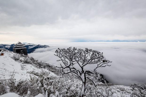 Toàn cảnh đỉnh Fansipan đẹp đến nao lòng trong màu tuyết trắng, ai mà nghĩ đây là Việt Nam chứ? - Ảnh 9.