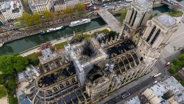 Xây dựng lại ngọn tháp của Nhà thờ Đức Bà Paris với 1.000 cây sồi hàng trăm năm tuổi - Ảnh 1.