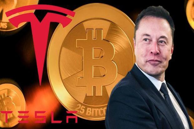 Tesla bốc hơi 300 tỷ USD giá trị thị trường do đầu cơ Bitcoin? - Ảnh 1.