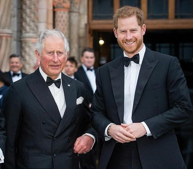 4 lý do để dù có ế tan tác, ế như một di tích cổ đại cũng đừng lấy chàng Hoàng tử như Harry - Ảnh 4.