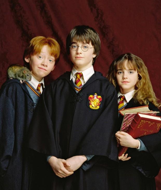 Dàn sao Harry Potter sau 20 năm: Hermione sắp cưới, Harry phải cai rượu, bất ngờ nhất là Voldemort 58 tuổi vẫn phong trần, quyến rũ! - Ảnh 2.
