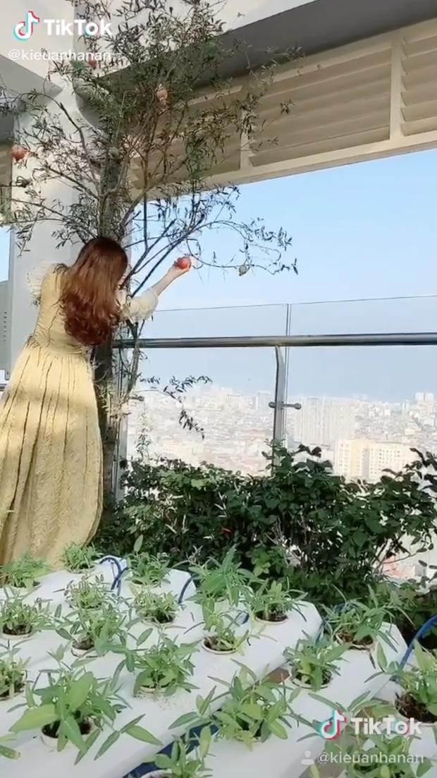 Nhà của phu nhân penthouse Anan Nguyễn nổi tiếng TikTok hoành tráng tới cỡ nào? - Ảnh 20.