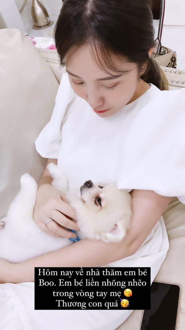 Phu nhân TGĐ Phan Thành đăng ảnh ôm chú chó định mệnh nhưng xem xong dân tình lại nghĩ cô có bầu? - Ảnh 1.