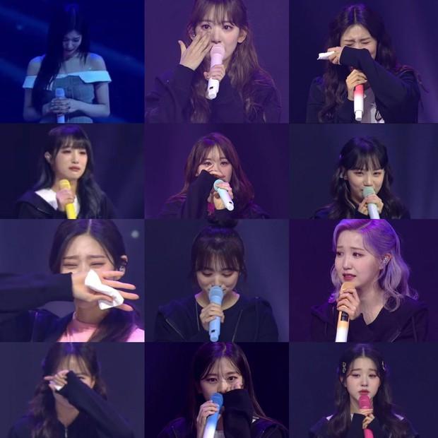 Trưởng nhóm IZ*ONE khóc nức nở trong concert cuối cùng, fan tan nát cõi lòng dù đã biết trước ngày tan rã - Ảnh 6.