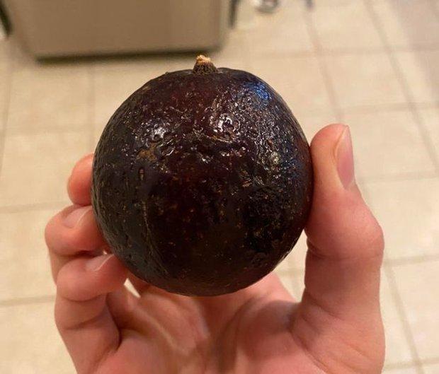 """Những lần con người tình cờ thấy trái cây có hình dáng siêu """"dị"""", trong một phút ngẫu hứng thiên nhiên đã nhào nặn quá tay? - Ảnh 5."""