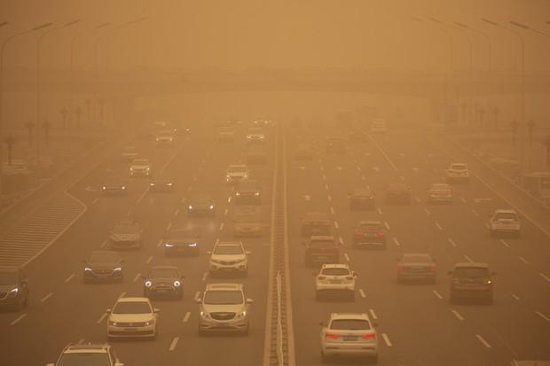 Sáu người chết, 81 người mất tích vì bão cát kinh hoàng ở Mông Cổ - Ảnh 1.