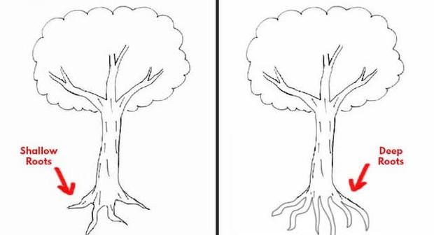 Đặt bút vẽ một chiếc cây, mỗi người cho ra một tác phẩm riêng: Bạn có biết tác phẩm của người hướng nội khác người hướng ngoại ở điểm nào không? - Ảnh 1.
