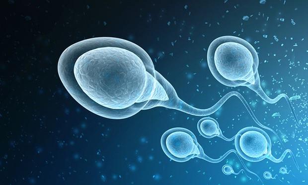 Thuốc tránh thai mới dành cho nam giới: Khiến cánh mày râu vô sinh tạm thời nhưng khi dừng thuốc vẫn có thể có con khỏe mạnh - Ảnh 2.