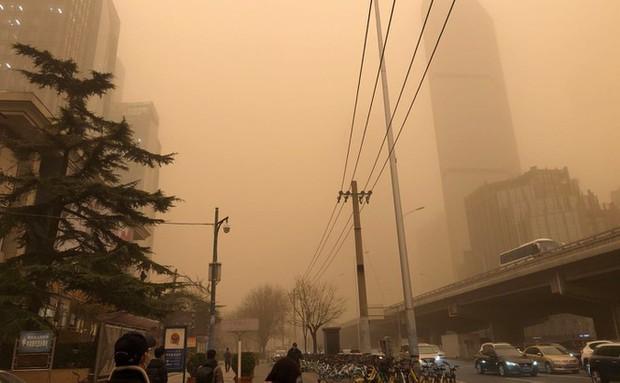 Sáu người chết, 81 người mất tích vì bão cát kinh hoàng ở Mông Cổ - Ảnh 4.