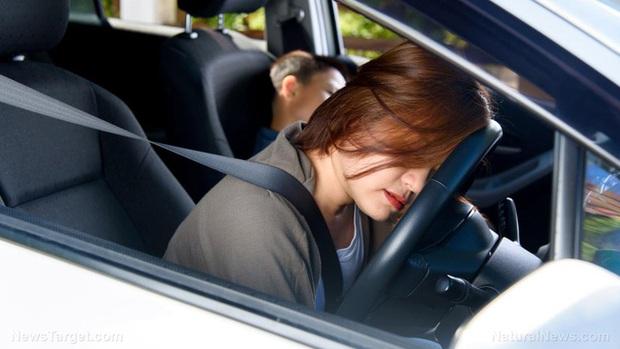 So với nam giới, phụ nữ có nguy cơ thương vong khi gặp tai nạn xe hơi cao hơn tới 73% - Ảnh 1.