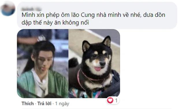 Cung Tuấn sẽ kế nhiệm Đặng Luân - Hồ Ca, netizen bất ngờ phản đối - Ảnh 6.