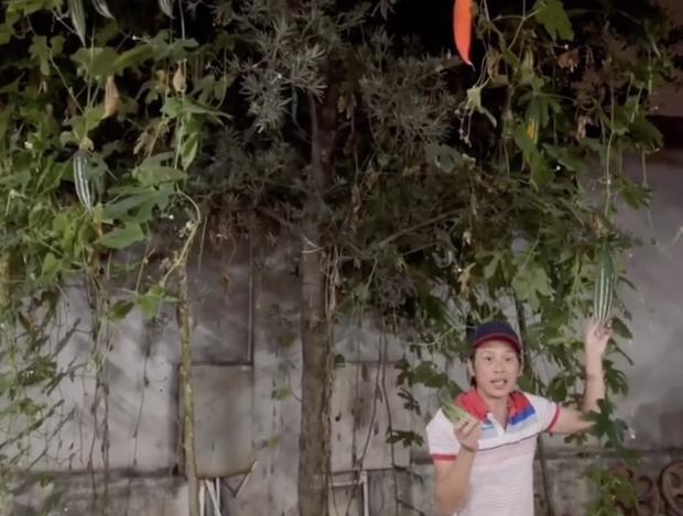NS Hoài Linh khoe trong vườn trăm tỷ nhà mình có giống cây lạ, tên gọi nghe kỳ quặc nhưng ăn vào ngon - bổ - mát - Ảnh 2.