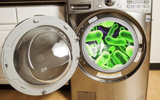 Cẩn thận với 3 ổ vi khuẩn tưởng không liên quan nhưng lại là tác nhân gây bệnh phụ khoa - Ảnh 1.