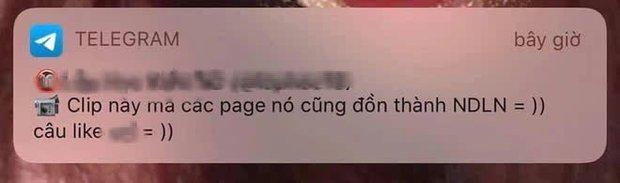 Cảnh báo: Nhiều group mại dâm nhạy cảm trên Telegram lừa đảo share link clip nóng giả Ninh Dương Lan Ngọc - Ảnh 5.