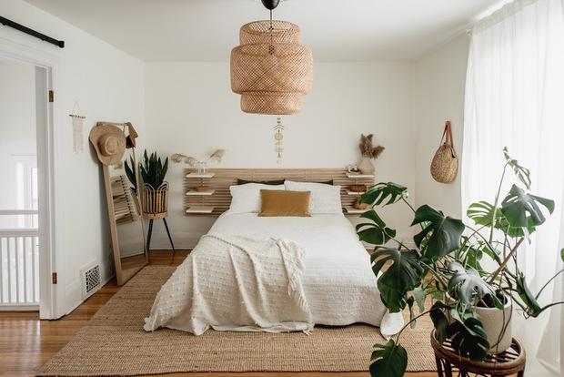 3 loại cây là khắc tinh của phòng ngủ, chớ mua kẻo rước bệnh tật và vận xui vào người - Ảnh 1.