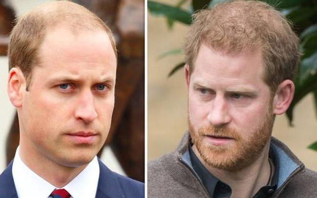 Hoàng tử William trở nên xa cách với em trai bởi một thông báo ngông cuồng, xúc phạm Nữ hoàng Anh của vợ chồng Meghan  - Ảnh 2.
