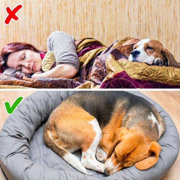Lỡ thức giấc giữa đêm mà không tài nào ngủ trở lại, đây là những tip cực đơn giản bạn nên áp dụng để cứu lấy giấc ngủ của mình - Ảnh 3.