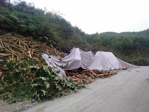 Ảnh: Hiện trường vụ tai nạn thảm khốc ở Thanh Hóa khiến 7 người tử vong - Ảnh 4.