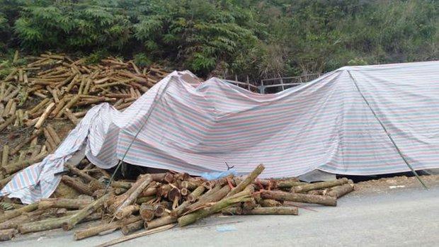 Ảnh: Hiện trường vụ tai nạn thảm khốc ở Thanh Hóa khiến 7 người tử vong - Ảnh 5.