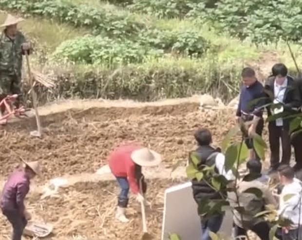 Netizen mắng Triệu Lệ Dĩnh quên nguồn cội vì không biết cày ruộng ở phim mới, visual bắt nắng cũng chả cứu nổi? - Ảnh 3.