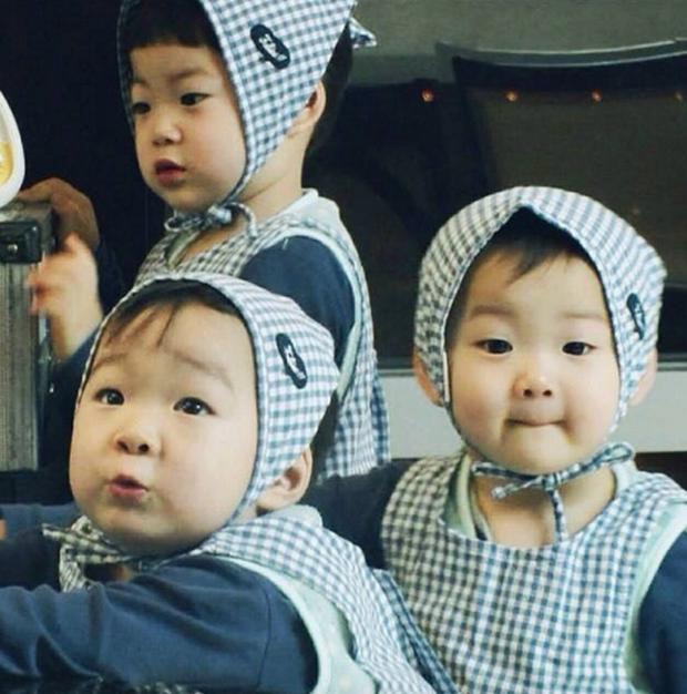 Daehan, Minguk, Manse lớn phổng phao ở sinh nhật 9 tuổi, dự đoán sẽ cao tới 1m85! - Ảnh 7.