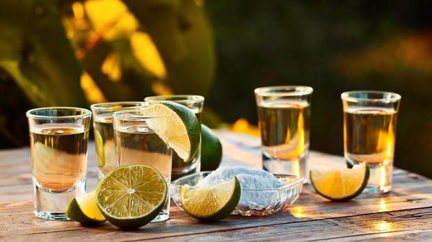Sửng sốt trước loại quả trông y hệt dứa khổng lồ, hoá ra là nguyên liệu tạo nên thứ đồ uống ngon nức tiếng trên thế giới - Ảnh 5.